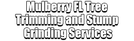 Mulberry FL Tree Trimming and Stump Grinding Services Logo-We Offer Tree Trimming Services, Tree Removal, Tree Pruning, Tree Cutting, Residential and Commercial Tree Trimming Services, Storm Damage, Emergency Tree Removal, Land Clearing, Tree Companies, Tree Care Service, Stump Grinding, and we're the Best Tree Trimming Company Near You Guaranteed!